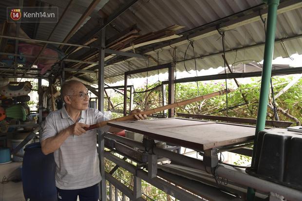 Ngắm ngôi nhà 5 tầng phủ kín cây hoa giấy của nguyên giảng viên Đại học Xây dựng Hà Nội, ai đi qua cũng sững sờ - Ảnh 5.