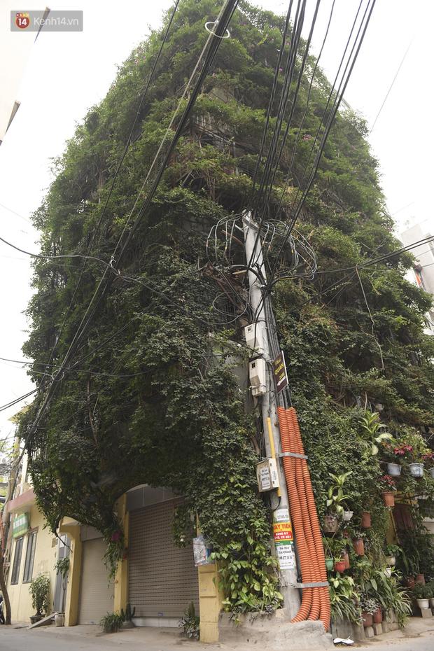 Ngắm ngôi nhà 5 tầng phủ kín cây hoa giấy của nguyên giảng viên Đại học Xây dựng Hà Nội, ai đi qua cũng sững sờ - Ảnh 2.