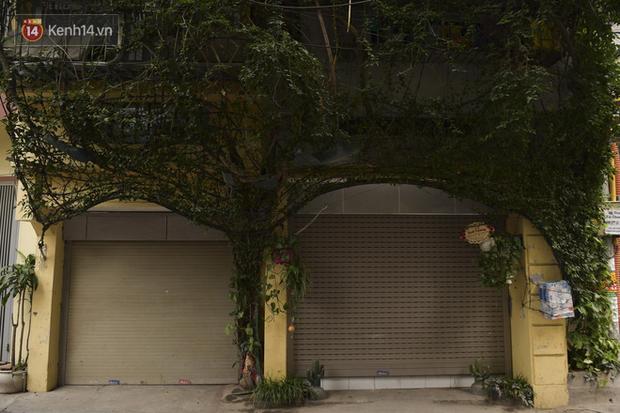 Ngắm ngôi nhà 5 tầng phủ kín cây hoa giấy của nguyên giảng viên Đại học Xây dựng Hà Nội, ai đi qua cũng sững sờ - Ảnh 7.