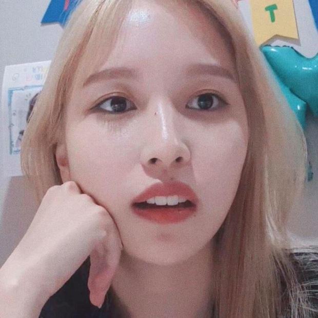 Lâu lắm mới lộ diện, mỹ nhân nước mắt kim cương Mina (TWICE) gây bão với mái tóc mới: Đúng là visual shock của Kpop! - Ảnh 10.