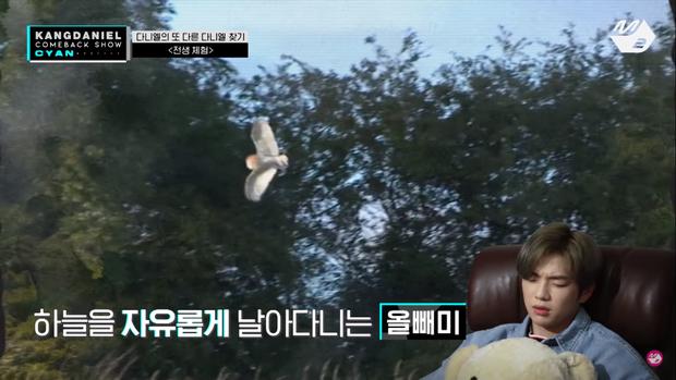 Trải nghiệm thuật thôi miên, Kang Daniel khiến khán giả nổi da gà khi bàn về cái chết ở kiếp trước - Ảnh 5.