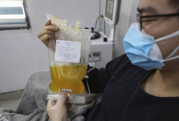 Covid-19: Mỹ dùng huyết tương điều trị, Iran 24.800 ca bệnh vẫn chưa phong tỏa - Ảnh 1.