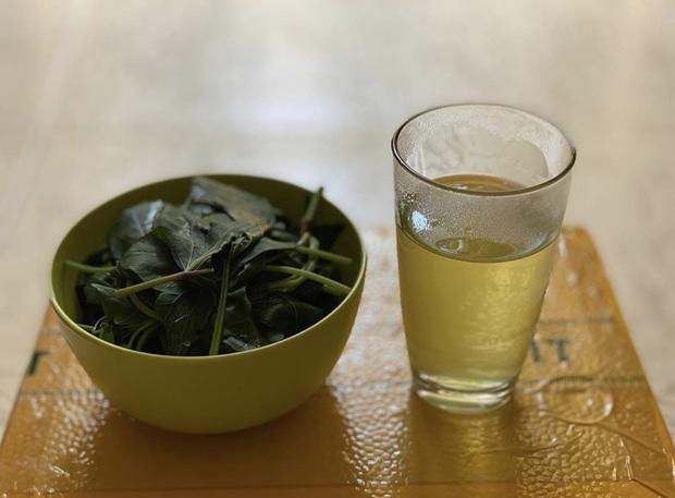 Đi cách ly nhưng lớp khẩu nghiệp của Võ Hoàng Yến có cả hoạt động ngoại khoá: tự hái rau lang organic để làm bữa trưa - Ảnh 5.