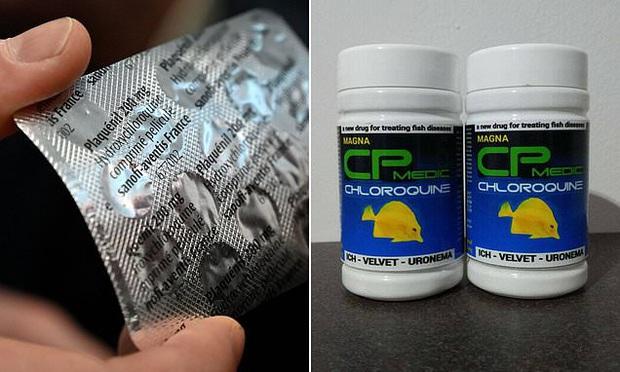 Một người đàn ông Mỹ tử vong khi uống chloroquine, vì nghĩ nó phòng được virus corona - Ảnh 1.