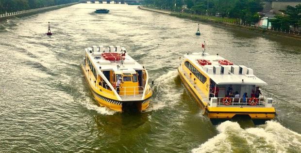 Sở GTVT TP HCM kiến nghị ngưng buýt sông, xe buýt không chở quá 20 khách - Ảnh 2.