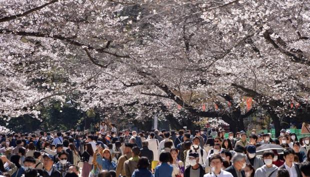 Nhật Bản có hơn 1300 người nhiễm Covid-19 trên đất liền, có thể ban bố tình trạng khẩn cấp; Tokyo trở thành tâm dịch mới - Ảnh 1.