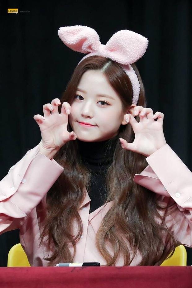 Phát hiện bầy thỏ trà trộn giữa dàn idol Kpop: Cute, sexy đủ cả với 2 điểm chung đặc biệt, nhưng ai mới là thỏ chúa? - Ảnh 15.