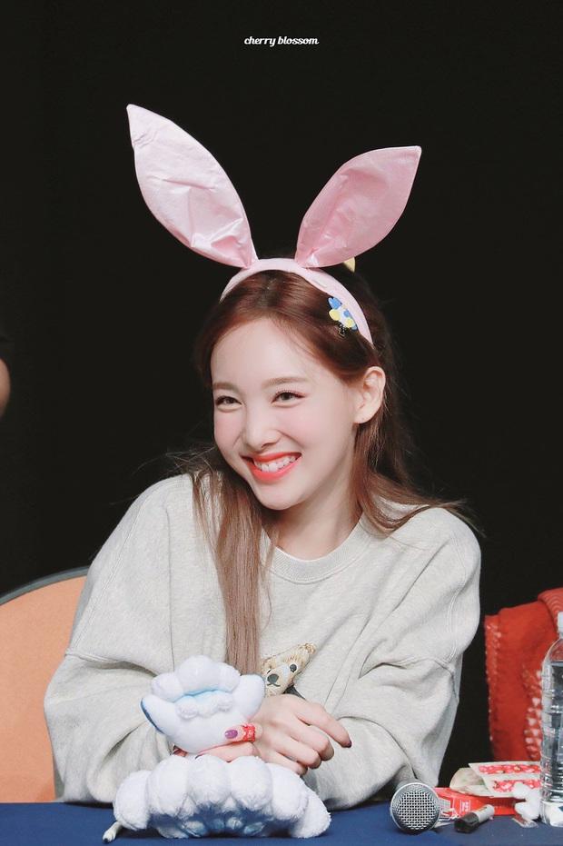 Phát hiện bầy thỏ trà trộn giữa dàn idol Kpop: Cute, sexy đủ cả với 2 điểm chung đặc biệt, nhưng ai mới là thỏ chúa? - Ảnh 11.