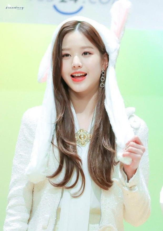 Phát hiện bầy thỏ trà trộn giữa dàn idol Kpop: Cute, sexy đủ cả với 2 điểm chung đặc biệt, nhưng ai mới là thỏ chúa? - Ảnh 14.