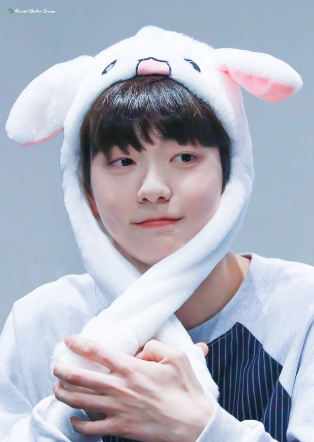 Phát hiện bầy thỏ trà trộn giữa dàn idol Kpop: Cute, sexy đủ cả với 2 điểm chung đặc biệt, nhưng ai mới là thỏ chúa? - Ảnh 23.