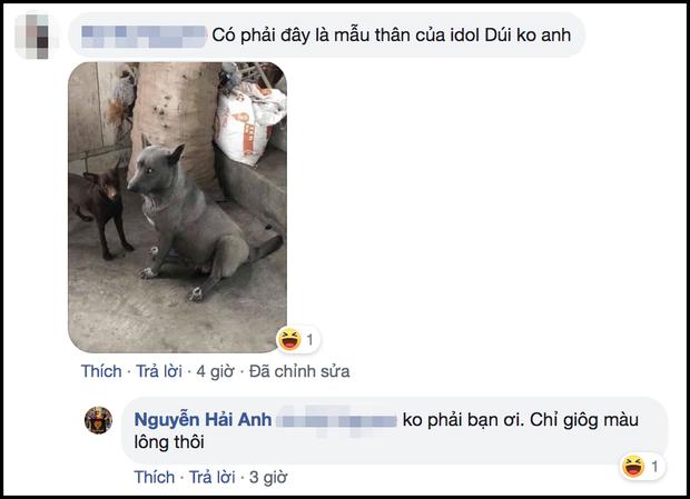 Sự thật về hình ảnh mẹ chú chó idol Nguyễn Văn Dúi, dân tình còn ngỡ ngàng vì giống nhau từ lông đến biểu cảm - Ảnh 4.