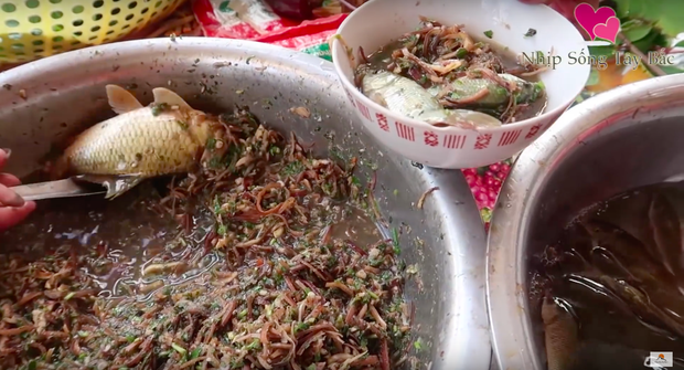 """Những món ăn sống kinh dị nhất Việt Nam: có món là đặc sản nổi tiếng nhưng vẫn khiến nhiều người """"khiếp đảm"""" - Ảnh 1."""