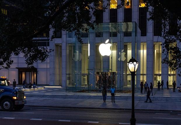 Thiệt hại lớn vì Covid-19 nhưng đây là lý do vì sao Apple vẫn có thể coi là may mắn hơn các đối thủ - Ảnh 1.
