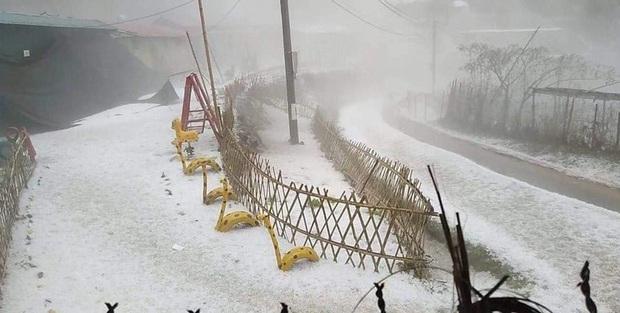 Mưa đá chưa từng thấy ở Lai Châu: Từng hạt to như viên bi, phủ trắng khắp nơi như tuyết - Ảnh 4.