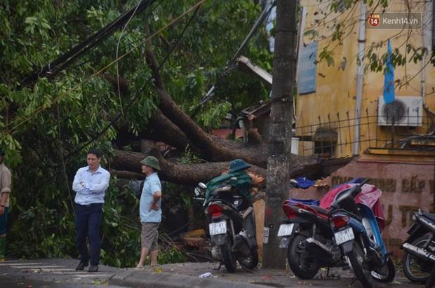 Hà Nội: Nhiều tuyến phố ngập nghiêm trọng, cây xanh bật gốc đổ ngang đường sau cơn mưa như trút nước - Ảnh 12.