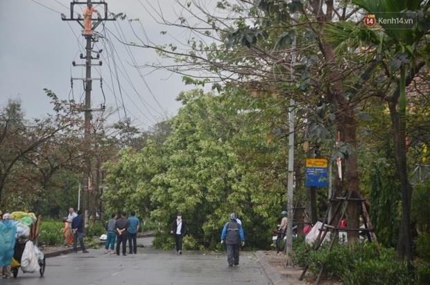Hà Nội: Nhiều tuyến phố ngập nghiêm trọng, cây xanh bật gốc đổ ngang đường sau cơn mưa như trút nước - Ảnh 15.