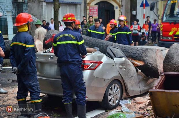 Hà Nội: Cây cổ thụ bật gốc vì mưa lớn, đè nát ô tô đậu trên vỉa hè - Ảnh 2.