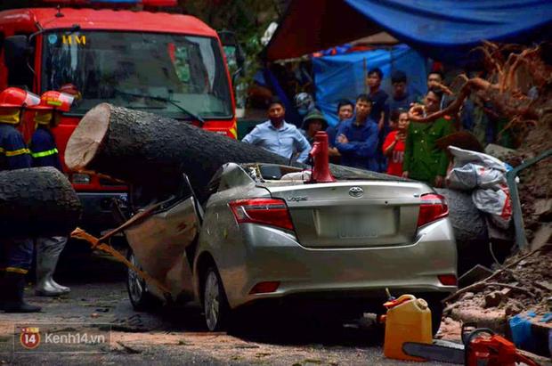 Hà Nội: Cây cổ thụ bật gốc vì mưa lớn, đè nát ô tô đậu trên vỉa hè - Ảnh 5.