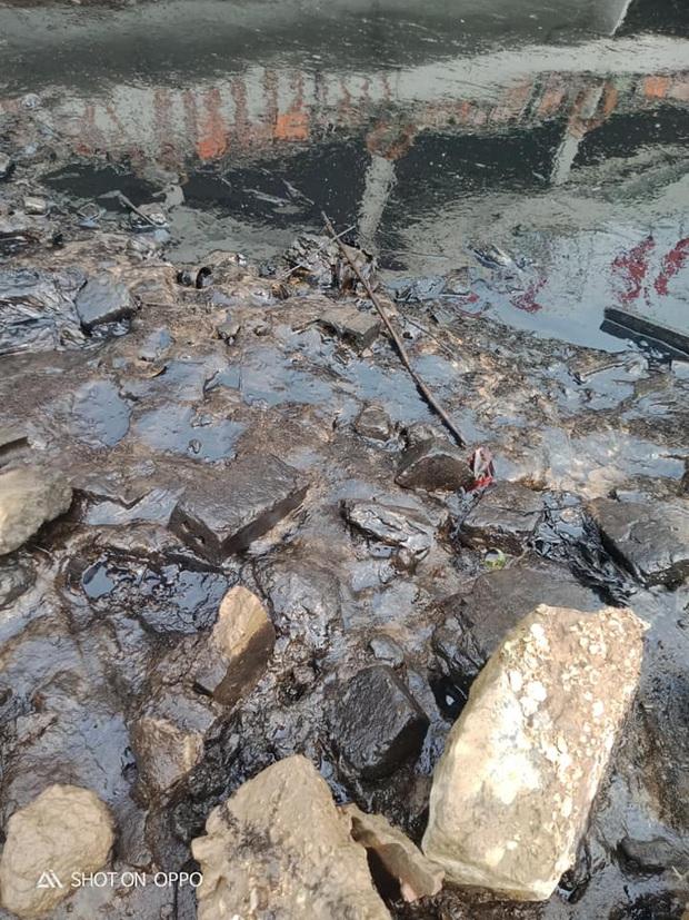 Người dân tá hỏa phát hiện dầu luyn đen ngòm tràn dọc bờ sông - Ảnh 2.