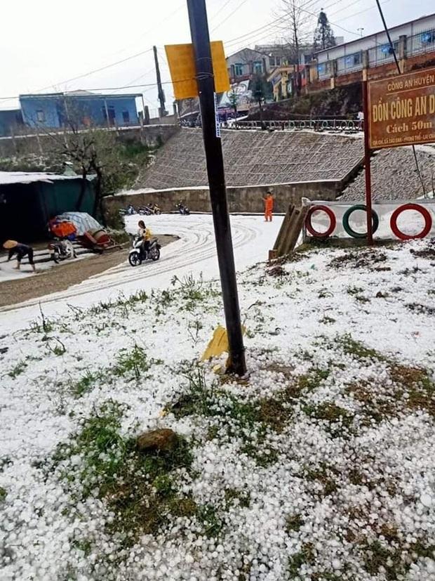 Mưa đá chưa từng thấy ở Lai Châu: Từng hạt to như viên bi, phủ trắng khắp nơi như tuyết - Ảnh 1.