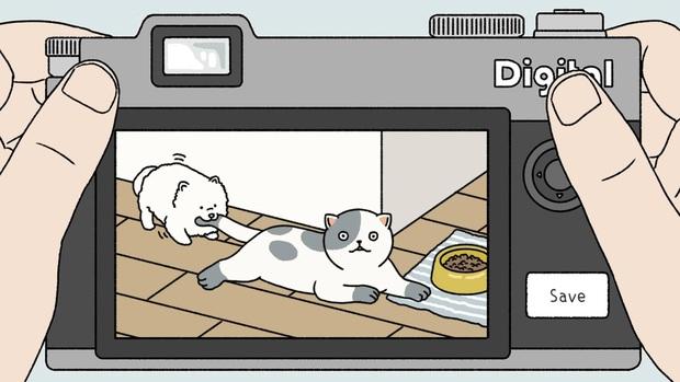 Cười sái hàm với loạt khoảnh khắc pose ảnh lầy lội trong Adorable Home, những chú mèo sao lại đáng yêu thế này! - Ảnh 3.