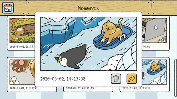 Cười sái hàm với loạt khoảnh khắc pose ảnh lầy lội trong Adorable Home, những chú mèo sao lại đáng yêu thế này! - Ảnh 4.