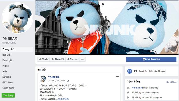 Nghệ sĩ YG còn chịu bất công hơn cả BLACKPINK: Debut đã 3 năm nhưng chưa 1 lần comeback, dự án nào của công ty cũng bị lờ đi - Ảnh 8.