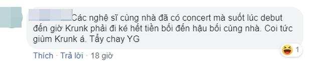 Nghệ sĩ YG còn chịu bất công hơn cả BLACKPINK: Debut đã 3 năm nhưng chưa 1 lần comeback, dự án nào của công ty cũng bị lờ đi - Ảnh 12.
