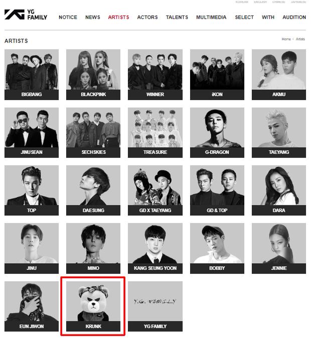 Nghệ sĩ YG còn chịu bất công hơn cả BLACKPINK: Debut đã 3 năm nhưng chưa 1 lần comeback, dự án nào của công ty cũng bị lờ đi - Ảnh 7.