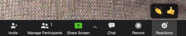 8 thứ hay ho của ứng dụng học online Zoom: Sống ảo bằng filter, react như Facebook... thứ gì cũng có - Ảnh 3.
