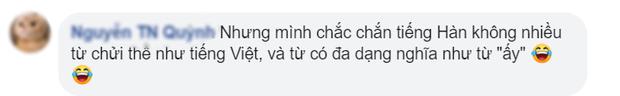 Dịch giả Parasite đau đầu vì từ oppa, fan Việt cà khịa sương sương: Mời anh sang học tiếng nước em! - Ảnh 6.