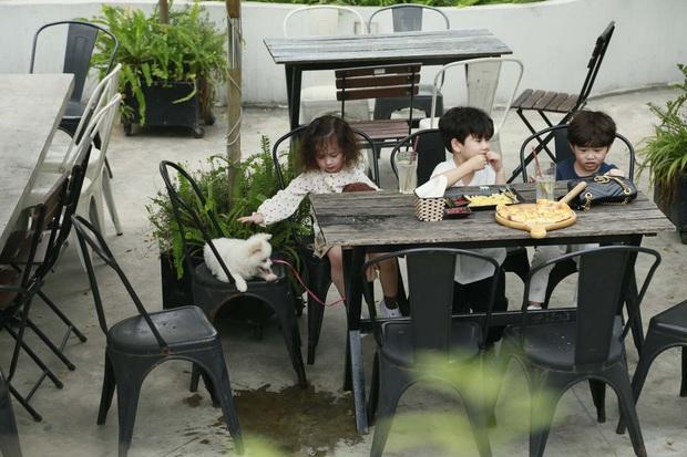Cam, Xoài, Đậu ngơ ngác khi để cún con làm vỡ cốc nước, ăn cả bánh pizza của cả 3 - Ảnh 6.