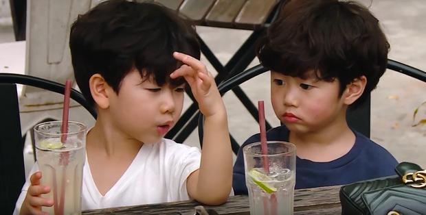 Cam, Xoài, Đậu ngơ ngác khi để cún con làm vỡ cốc nước, ăn cả bánh pizza của cả 3 - Ảnh 5.