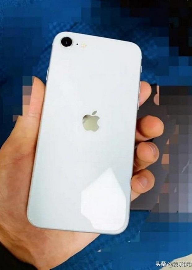 Lộ ảnh nóng iPhone 9 rõ mồn một: Phiên bản màu trắng, thoạt nhìn chẳng khác gì iPhone 8? - Ảnh 1.