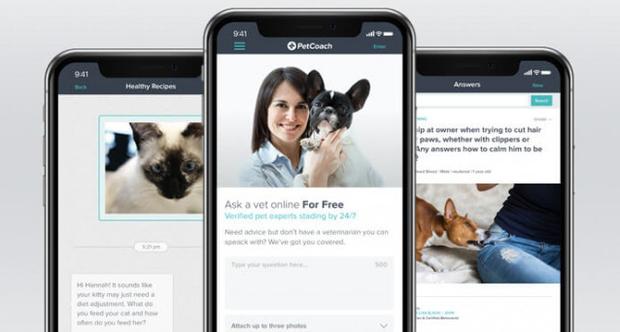 Những ứng dụng siêu hay ho để chăm sóc thú cưng mà các con sen không thể bỏ qua - Ảnh 1.