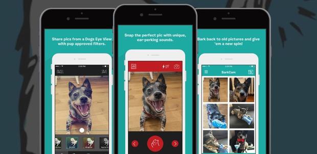 Những ứng dụng trên smartphone dành cho thú cưng mà các con sen không thể bỏ qua - Ảnh 4.