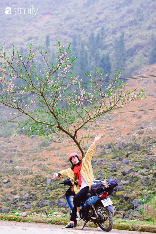 Hà Giang tháng 3 đẹp mê hồn trong mắt cô gái trẻ xứ Thanh, thật khó tin khi 4 loài hoa núi rừng đủ sắc màu cùng nở một lúc - Ảnh 1.