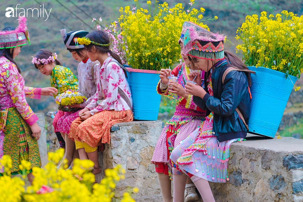 Hà Giang tháng 3 đẹp mê hồn trong mắt cô gái trẻ xứ Thanh, thật khó tin khi 4 loài hoa núi rừng đủ sắc màu cùng nở một lúc - Ảnh 15.