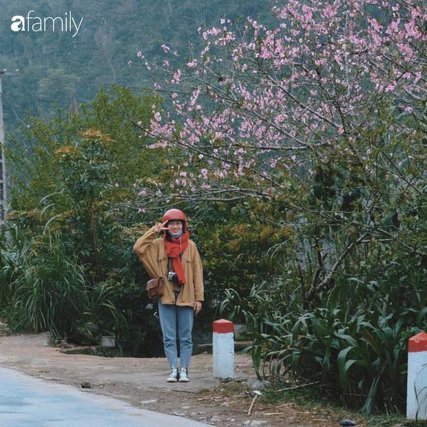 Hà Giang tháng 3 đẹp mê hồn trong mắt cô gái trẻ xứ Thanh, thật khó tin khi 4 loài hoa núi rừng đủ sắc màu cùng nở một lúc - Ảnh 20.