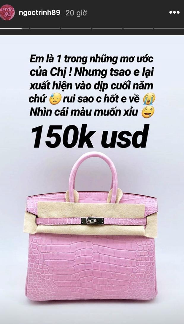 Có cả gia tài túi hiệu, Ngọc Trinh vẫn ủ mưu nuôi heo đất để có tiền mua túi Hermès hơn 3 tỷ - Ảnh 4.