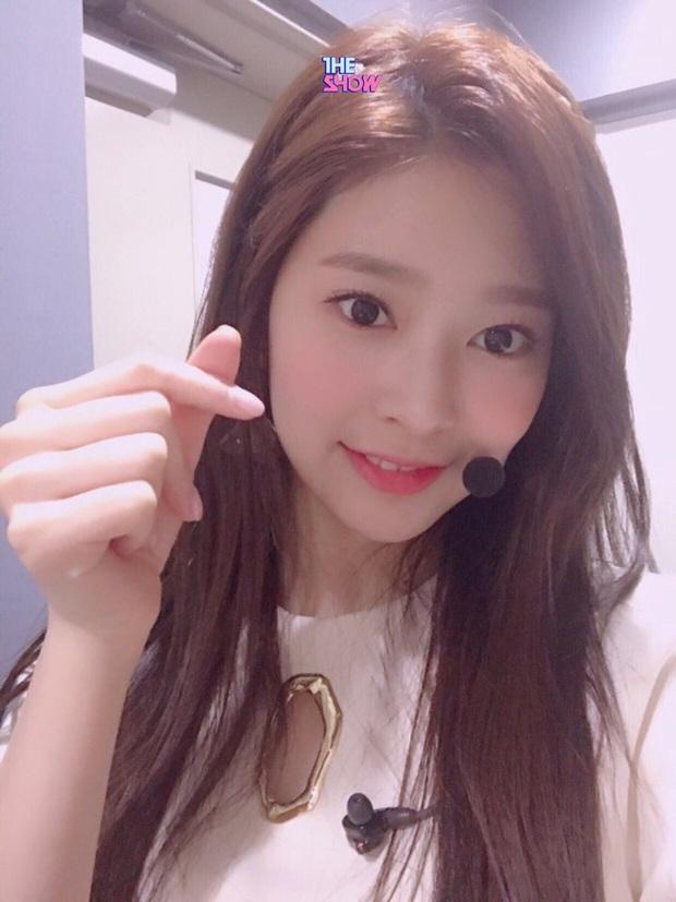 Idol 10X được kì vọng soán ngôi nhan sắc của Irene, Tzuyu, thì ra là người quen của series Produce! - Ảnh 5.