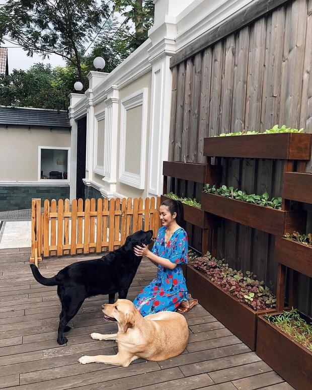 Băng Di khoe quà được Hà Tăng hái tặng từ vườn: Trái xoài cả kg to hơn mặt bạn trai, nàng ngọc nữ quả thật mát tay - Ảnh 4.