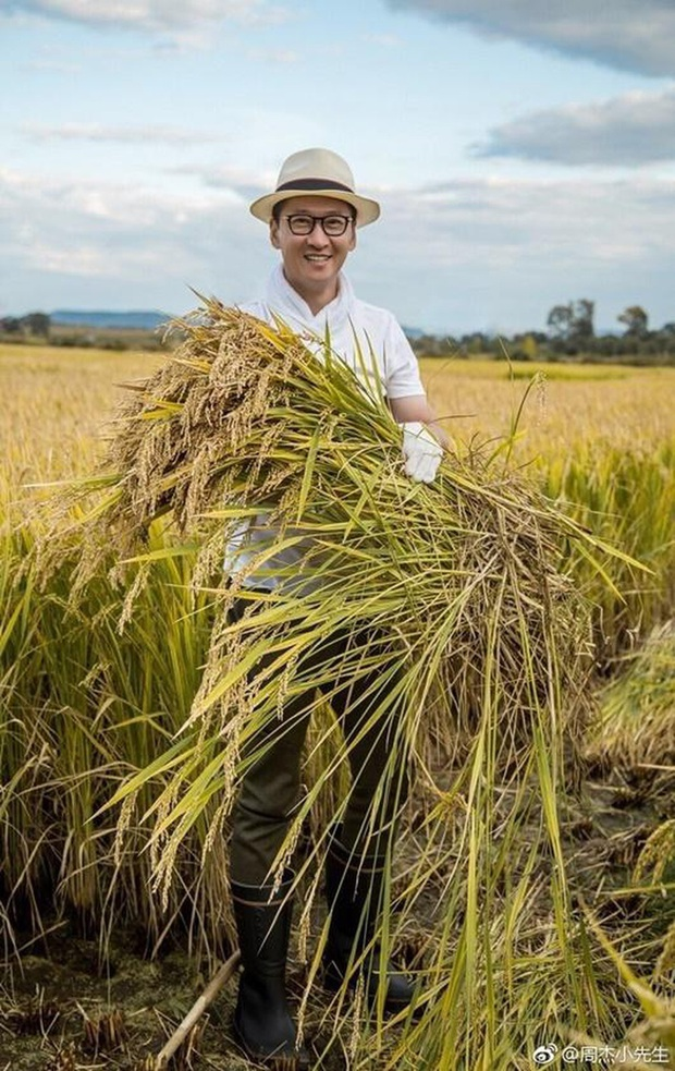 Chiến dịch vì kinh tế của toàn Cbiz thời COVID-19: Sao quyên số tiền quá khủng 2000 tỷ đồng, Nhĩ Khang ủng hộ 20.000kg gạo - Ảnh 8.