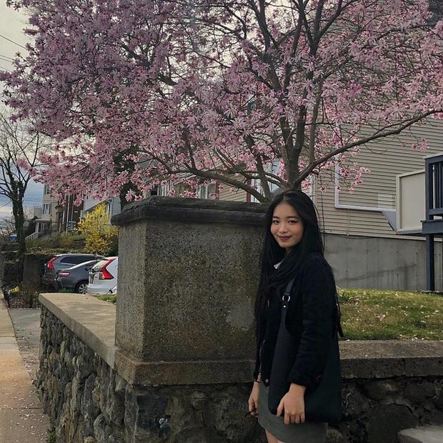 4 ái nữ nhà sao Việt kín tiếng nhưng xinh nức nở: Hết ví với Lưu Diệc Phi lại đến Hoa hậu, con gái Duy Mạnh lớn lắm rồi! - Ảnh 15.