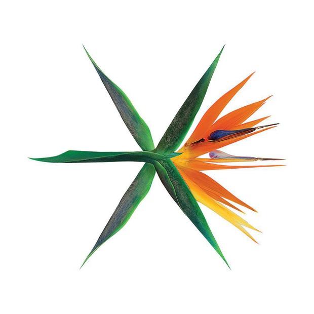 Top 15 album boygroup bán chạy nhất thập niên 2010: BTS áp đảo doanh số, EXO hụt hơi, tân binh khủng long đã tan rã nhưng vẫn góp mặt - Ảnh 17.