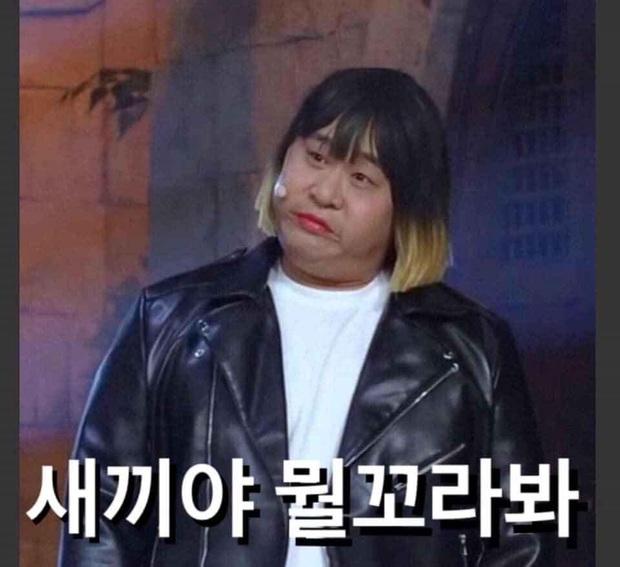 Khóc thét vì màn cosplay ngàn cân quên luôn bản gốc của điên nữ và Park Sae Ro Yi của Tầng Lớp Itaewon - Ảnh 6.