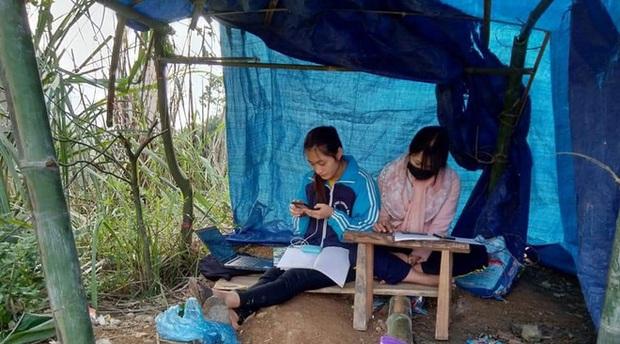 Nữ sinh dựng lán giữa đồi cao bắt sóng học online: Có hôm mưa bão chỉ kịp khoác vội áo mưa cho máy tính, còn mình chịu ướt sũng - Ảnh 1.