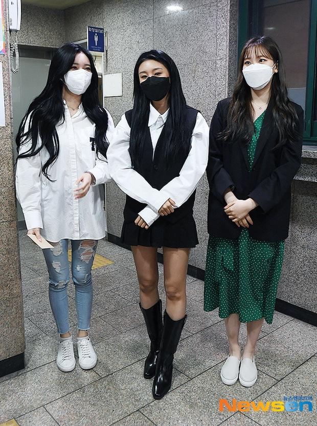 Park Seo Joon, T-ara và dàn sao Hàn đi bầu cử mùa dịch: Khẩu trang, găng tay đầy đủ, thành viên BLACKPINK hụt chiếm spotlight - Ảnh 16.