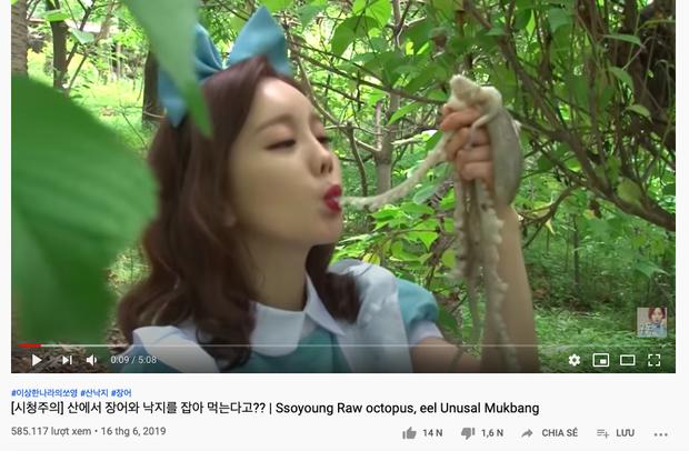 """""""Thánh ăn Hàn Quốc"""" Ssoyoung khiến nhiều YouTuber nổi tiếng phẫn nộ vì hành hạ động vật sống, có người còn yêu cầu cô xoá luôn kênh 3,45tr subscribes - Ảnh 8."""