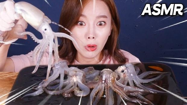 """""""Thánh ăn Hàn Quốc"""" Ssoyoung khiến nhiều YouTuber nổi tiếng phẫn nộ vì hành hạ động vật sống, có người còn yêu cầu cô xoá luôn kênh 3,45tr subscribes - Ảnh 6."""
